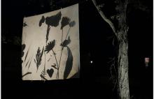 Le Grand Lavage de Printemps, édition 2018, photos © Jef Rabillon