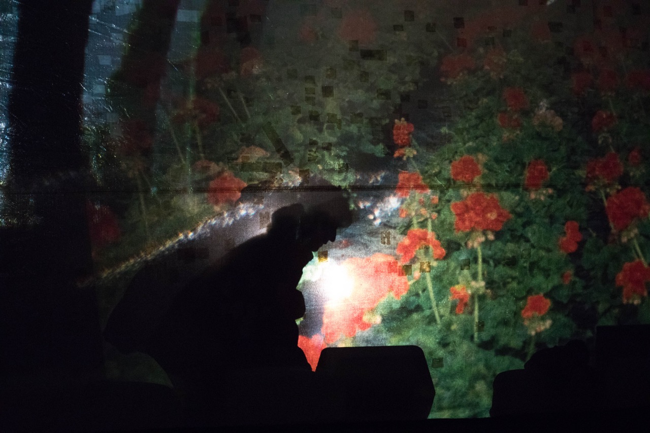 """INSTANTANÉ 15e mvt MARAIS DE VIGUERAT-CAMARGUE"